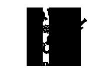 Fireball logo.